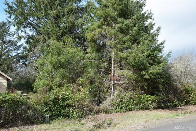 127 S Narwhal Lp SW, Ocean Shores, WA 98569 (#1260064) :: Canterwood Real Estate Team