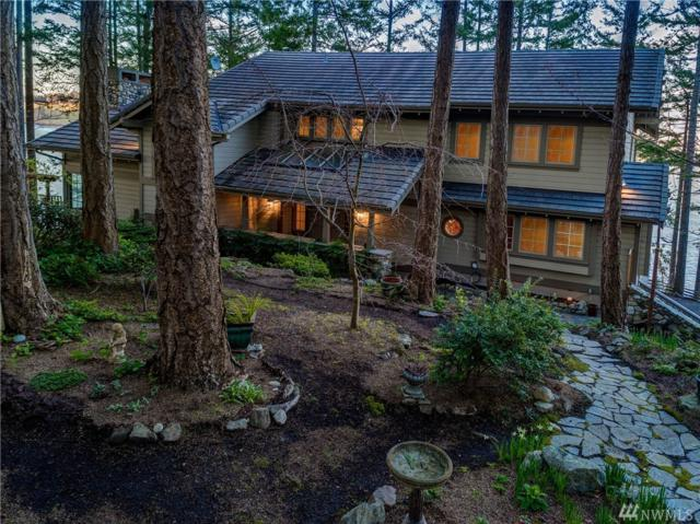 451 Davison Head Dr, Friday Harbor, WA 98250 (#1260725) :: Ben Kinney Real Estate Team