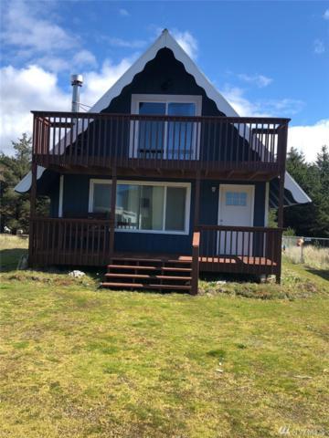 29 Mccullough Rd, Copalis Beach, WA 98569 (#1260783) :: Canterwood Real Estate Team