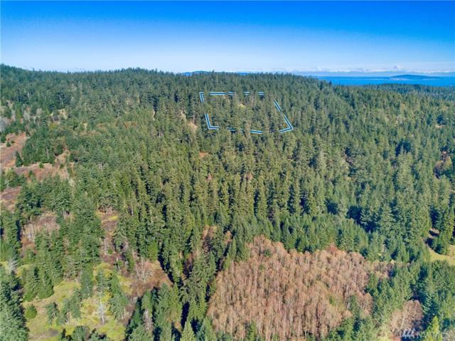 5-Parcel E Sandwith Rd, San Juan Island, WA 98250 (#1261079) :: Homes on the Sound