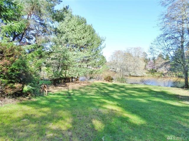 464 Dolphin Ave NE, Ocean Shores, WA 98569 (#1261173) :: The DiBello Real Estate Group