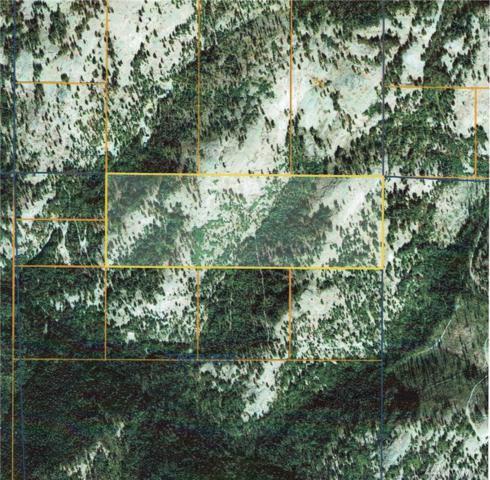 0-TBD Cougar Creek Rd, Wauconda, WA 98859 (#1261186) :: The DiBello Real Estate Group