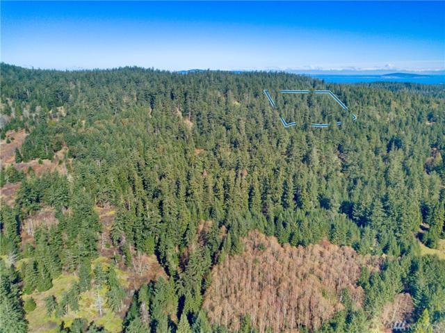 7-Parcel G Sandwith Rd, San Juan Island, WA 98250 (#1261348) :: Keller Williams - Shook Home Group