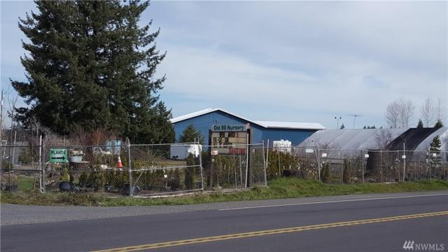 19600 Ivan St SW, Rochester, WA 98579 (#1261682) :: NW Home Experts