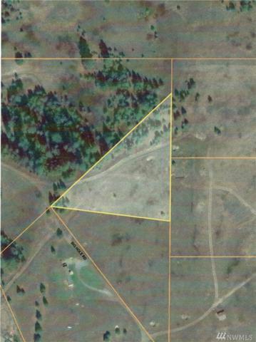 14 Big Hole Rd, Republic, WA 99166 (#1261876) :: The DiBello Real Estate Group