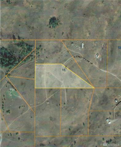 0-TBD Elizabeth View Lane, Republic, WA 99166 (#1261988) :: The DiBello Real Estate Group