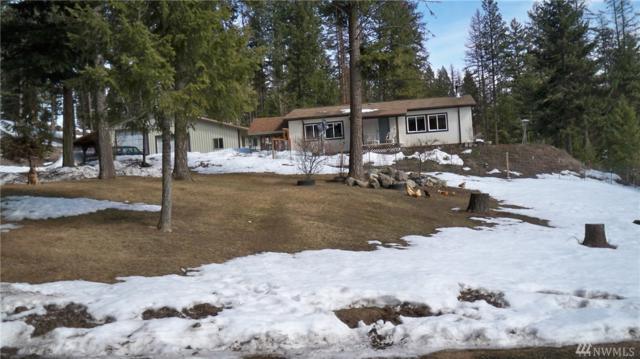 767 Trout Creek Rd, Republic, WA 99166 (#1262278) :: The DiBello Real Estate Group