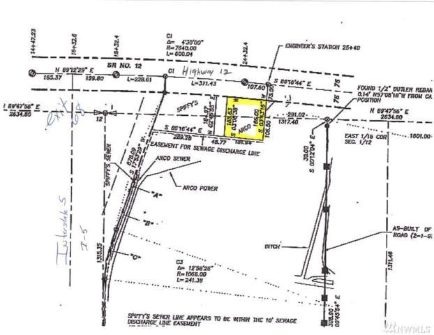116 Us Highway 12, Chehalis, WA 98532 (#1263125) :: Keller Williams Everett