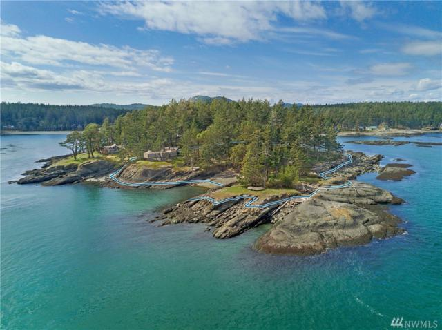255 Camp Everhappy, Stuart Island, WA 98250 (#1263129) :: Homes on the Sound