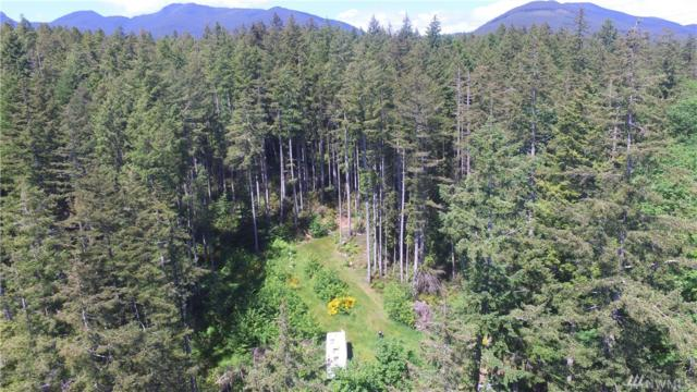 58 Old Point Whitney Rd, Brinnon, WA 98320 (#1263494) :: Morris Real Estate Group