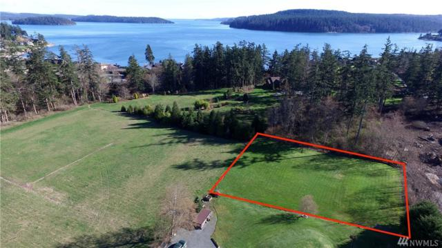6096 State Route 20, Anacortes, WA 98221 (#1263591) :: Real Estate Solutions Group