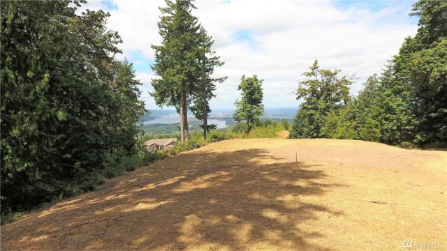 260 Golden Eagle Rd, Kelso, WA 98629 (#1263935) :: NW Home Experts