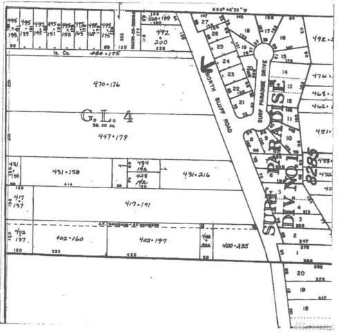 0 N Bluff Rd, Greenbank, WA 98253 (#1264885) :: Homes on the Sound