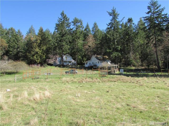 398 Olson Lane, Orcas Island, WA 98245 (#1265157) :: Better Homes and Gardens Real Estate McKenzie Group