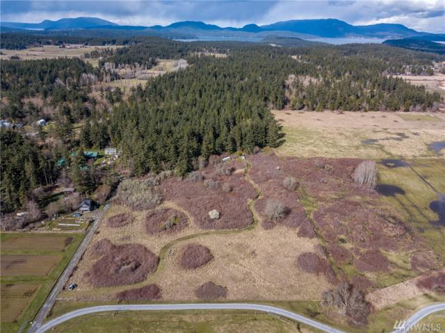 316 Morning Star Lane, Lopez Island, WA 98261 (#1265346) :: Better Homes and Gardens Real Estate McKenzie Group