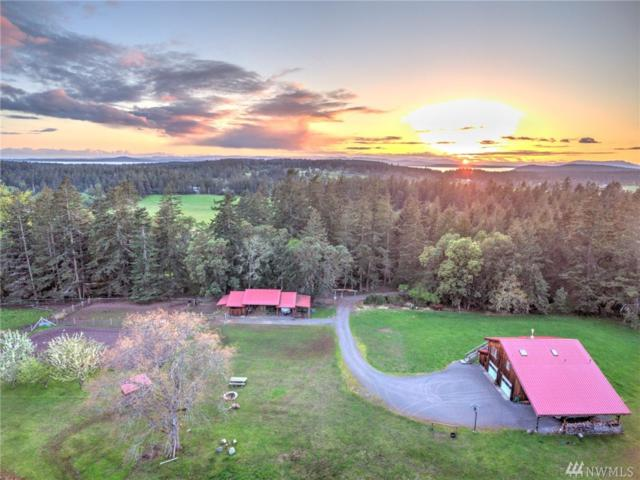 2628 West Valley Rd, San Juan Island, WA 98250 (#1266099) :: Carroll & Lions