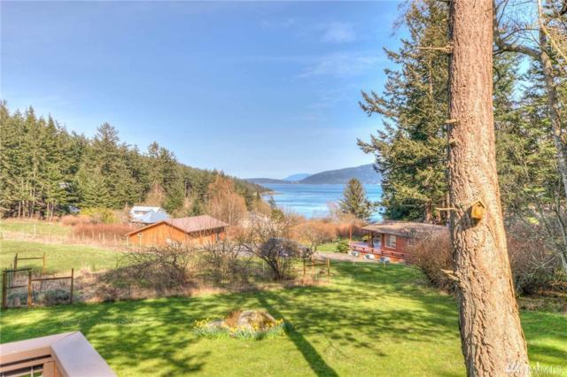 173 Peapod Lane, Orcas Island, WA 98279 (#1266964) :: Homes on the Sound