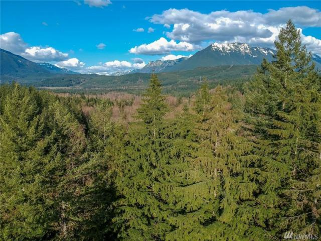 4-xxxx SE Edgewick Rd, North Bend, WA 98045 (#1266993) :: Real Estate Solutions Group