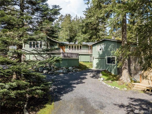 57 Olympic View Dr, San Juan Island, WA 98250 (#1267199) :: Icon Real Estate Group