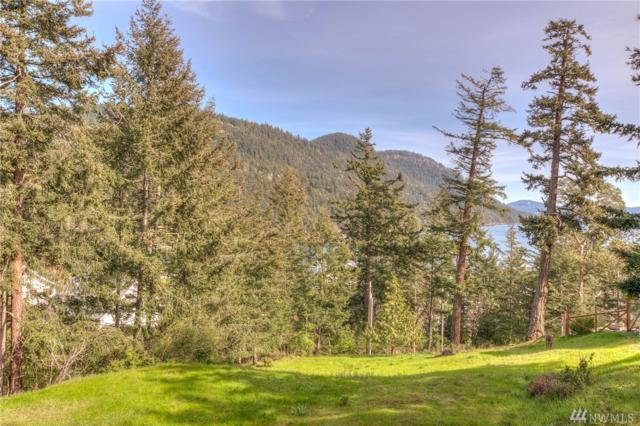 58 Ocean Mist Wy, Orcas Island, WA 98245 (#1267782) :: Icon Real Estate Group