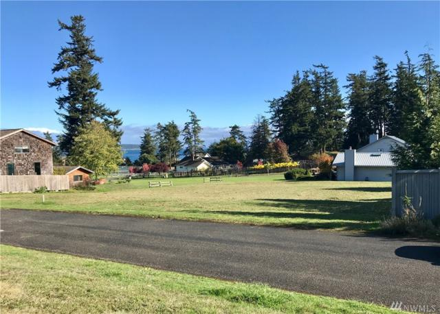 17 Echo Bay Drive, Orcas Island, WA 98245 (#1268196) :: Carroll & Lions