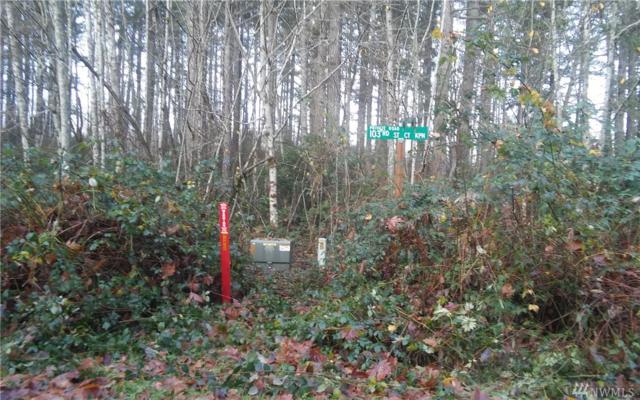 17603 103rd St Ct NW, Vaughn, WA 98394 (#1268222) :: Morris Real Estate Group