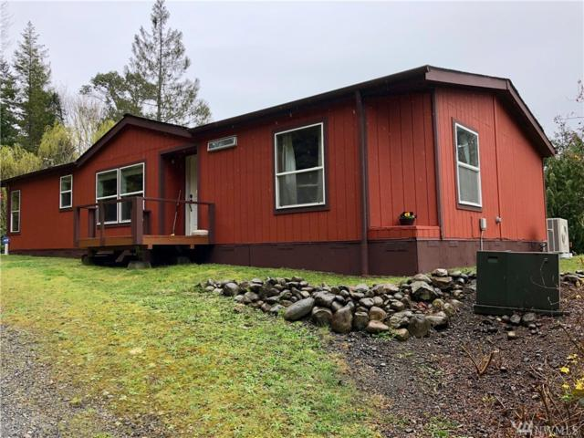 80 N Jorsted Creek Rd, Lilliwaup, WA 98555 (#1268254) :: Better Homes and Gardens Real Estate McKenzie Group