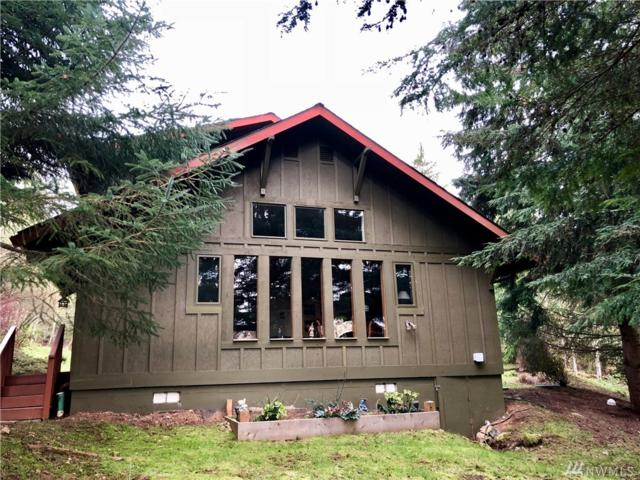 139 Dragonfly Dr., Orcas Island, WA 98279 (#1268695) :: Real Estate Solutions Group