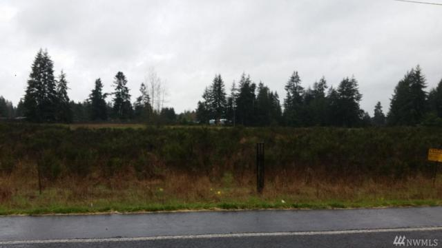 18511 SW Sargent Rd, Rochester, WA 98579 (#1268730) :: Carroll & Lions