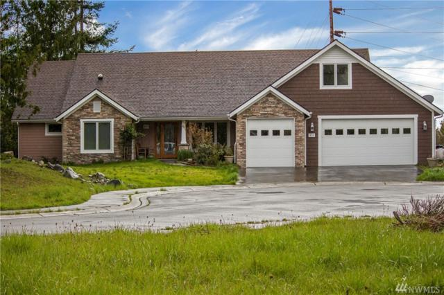 823 Sunday Dr, Friday Harbor, WA 98250 (#1269294) :: Kwasi Bowie and Associates