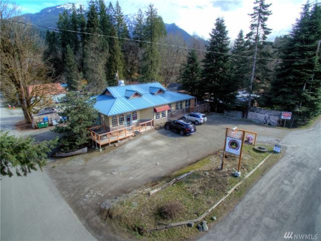 9990 Mt Baker Hwy, Glacier, WA 98244 (#1269454) :: The Robert Ott Group