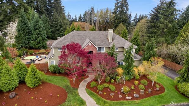 259 145th Ave SE, Bellevue, WA 98007 (#1269521) :: The DiBello Real Estate Group