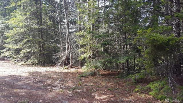 0-XXX Lakeview Dr, Ronald, WA 98940 (#1269558) :: Real Estate Solutions Group