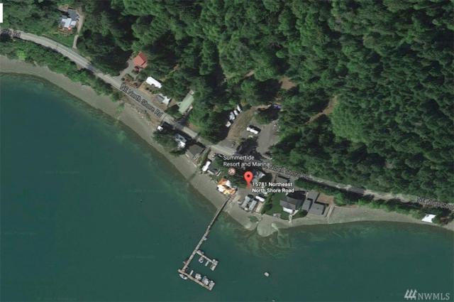 15711 NE North Shore Rd, Tahuya, WA 98588 (#1269864) :: Homes on the Sound
