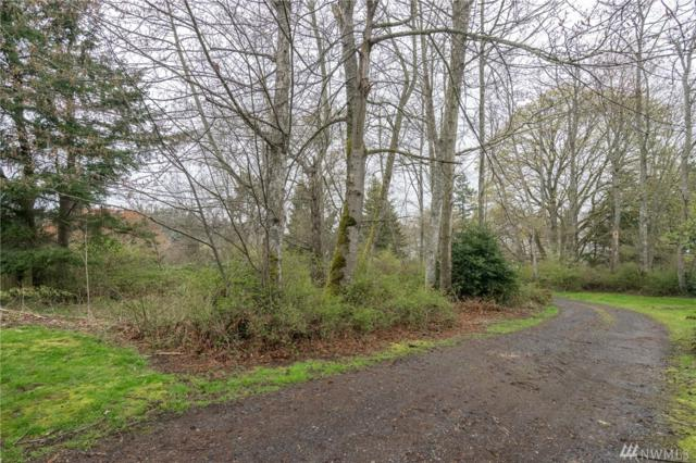 1-Lot Legoe Bay Rd, Lummi Island, WA 98262 (#1269926) :: The Royston Team