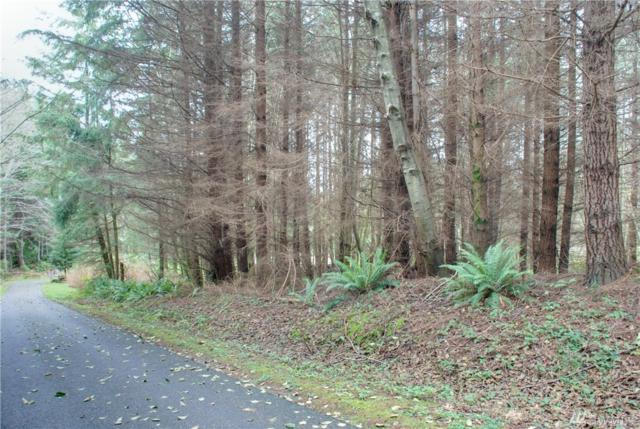 0-Lot 2 Parkview Lane, Port Ludlow, WA 98365 (#1270161) :: Homes on the Sound