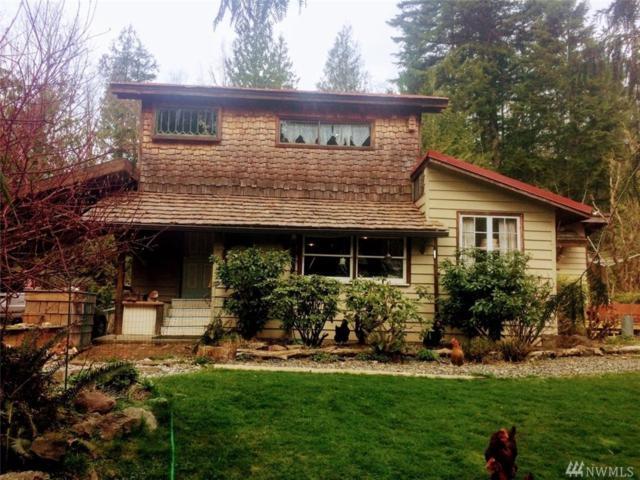 5044 South Pass Rd, Sumas, WA 98295 (#1270409) :: Homes on the Sound