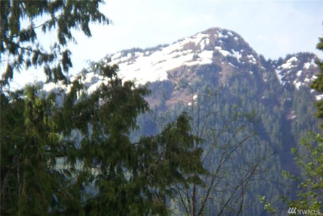 7141 Ranier Wy, Glacier, WA 98244 (#1270681) :: The Robert Ott Group