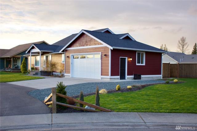 502 Harrison Lane, Nooksack, WA 98276 (#1271056) :: Homes on the Sound