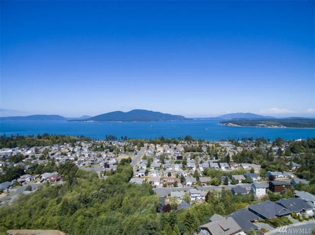 3715 W 10th St, Anacortes, WA 98221 (#1271310) :: Real Estate Solutions Group