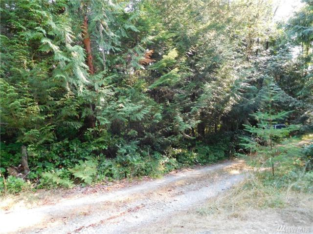 0 L Lee Valley Rd, Quilcene, WA 98376 (#1271671) :: Homes on the Sound