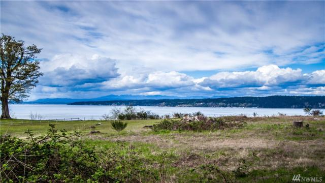 2920 Newell Rd, Camano Island, WA 98282 (#1271722) :: Real Estate Solutions Group