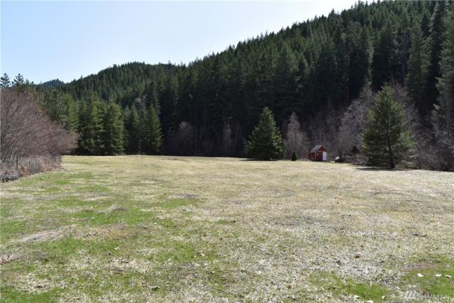 10115 Merry Canyon Rd, Leavenworth, WA 98826 (#1271764) :: Homes on the Sound