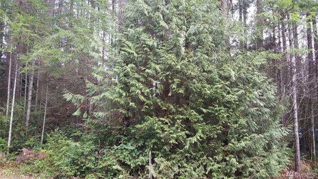 10-lot Crestview Dr, Shelton, WA 98584 (#1272763) :: Homes on the Sound