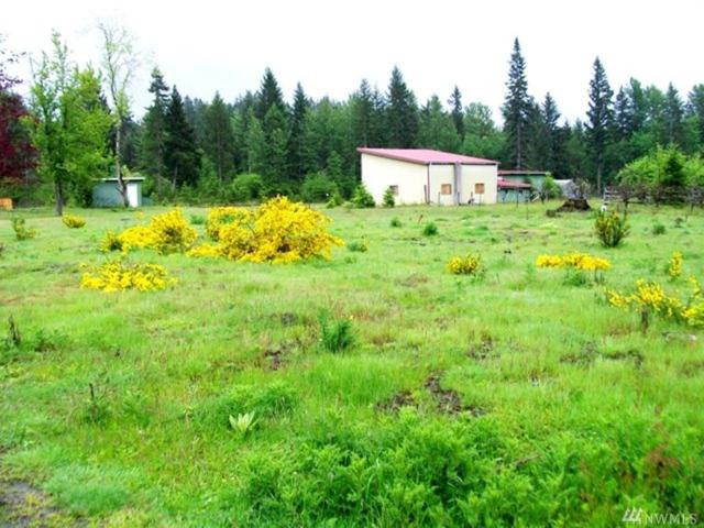 286 Cannon Rd, Packwood, WA 98361 (#1273383) :: Homes on the Sound