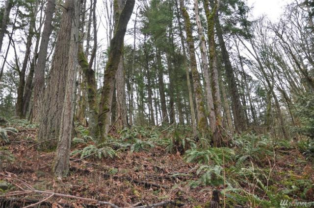 42-XX Dale Rd, Bellingham, WA 98226 (#1273799) :: Homes on the Sound