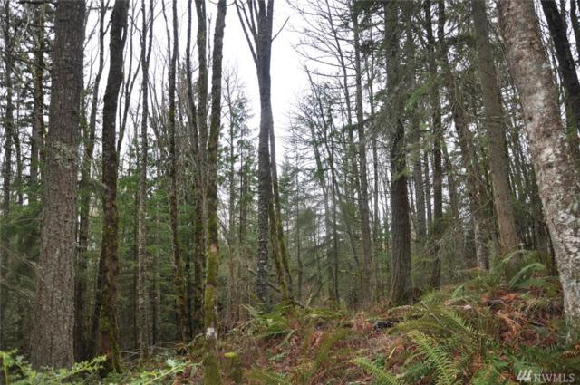 4196 Jimi Hendrix Wy, Bellingham, WA 98226 (#1274003) :: Homes on the Sound