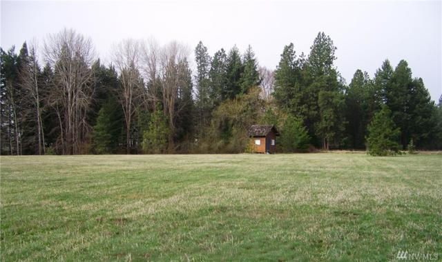 881 Pays Rd, Cle Elum, WA 98922 (#1274028) :: Homes on the Sound