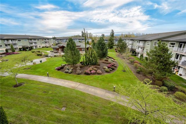 516 Darby Dr #313, Bellingham, WA 98226 (#1274376) :: The Snow Group at Keller Williams Downtown Seattle