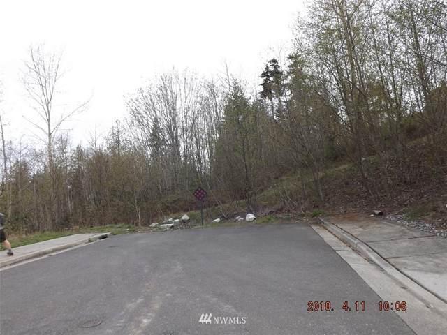 0 Chandler Parkway, Bellingham, WA 98226 (#1274527) :: Canterwood Real Estate Team